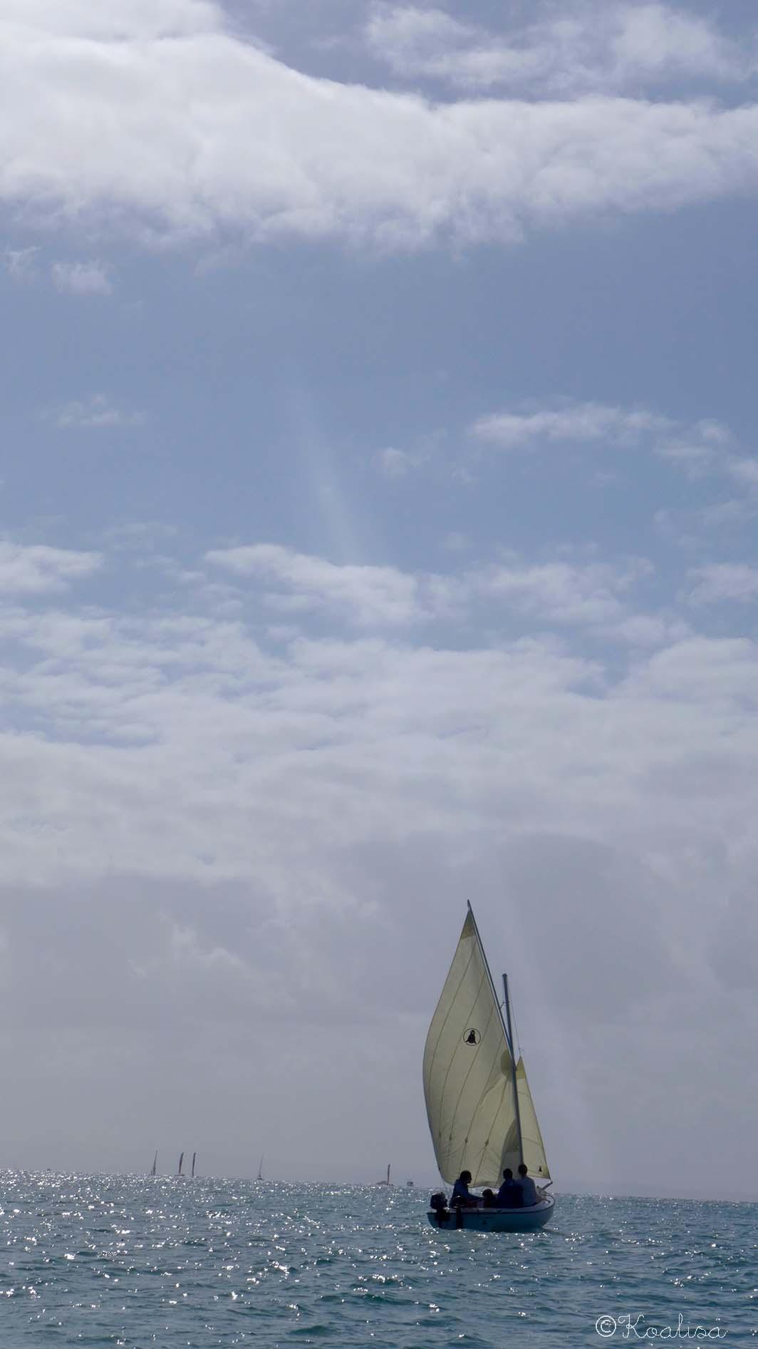 Balade en bateau à Morgat : l'anse de l'Ile Vierge et la Grotte de l'Eglise