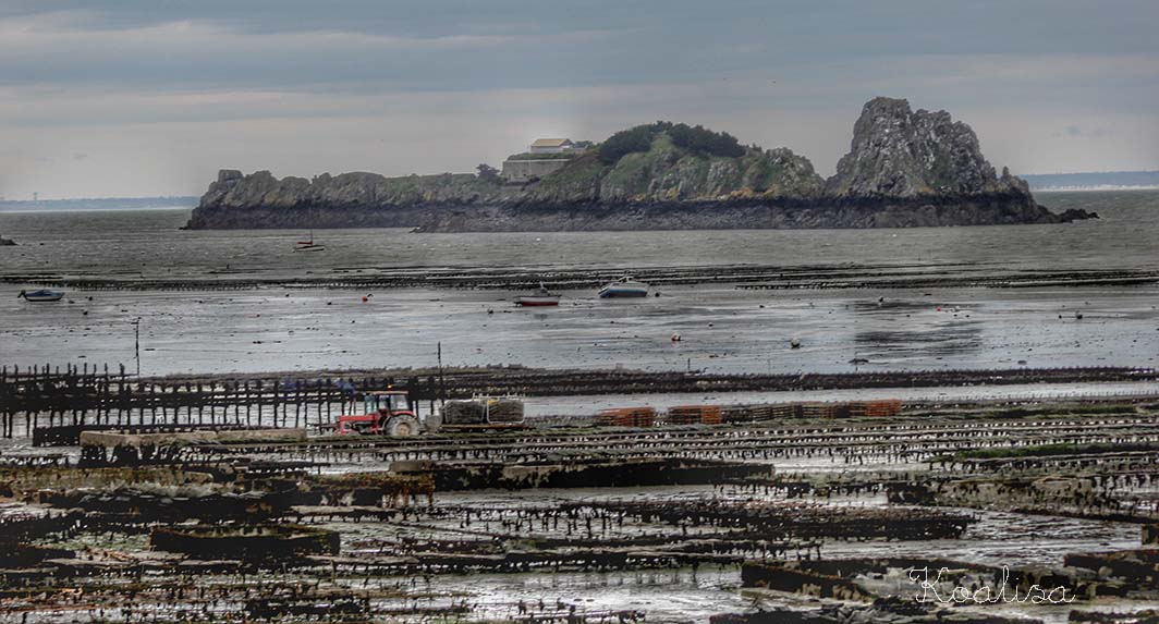 cancale16-01