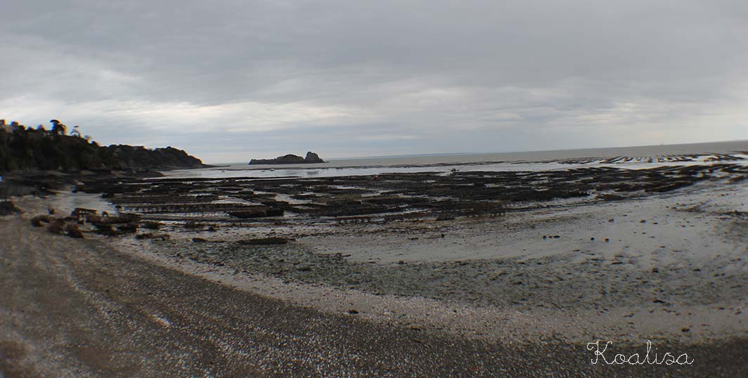cancale18