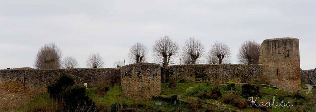 chateau dinan2