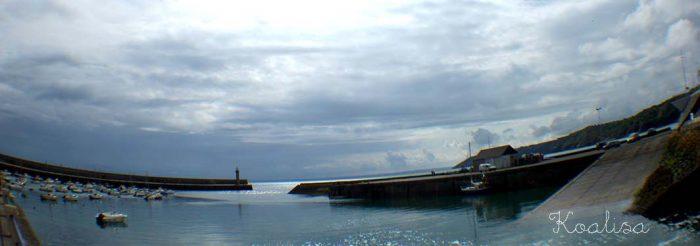 port binic 9