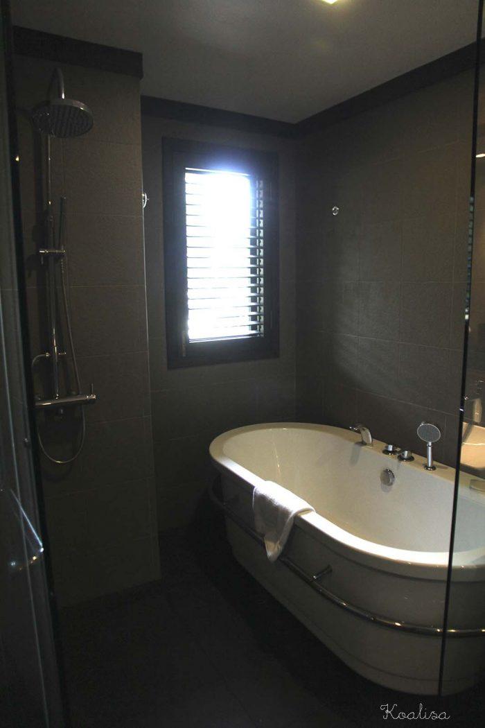 taarasbathroom2